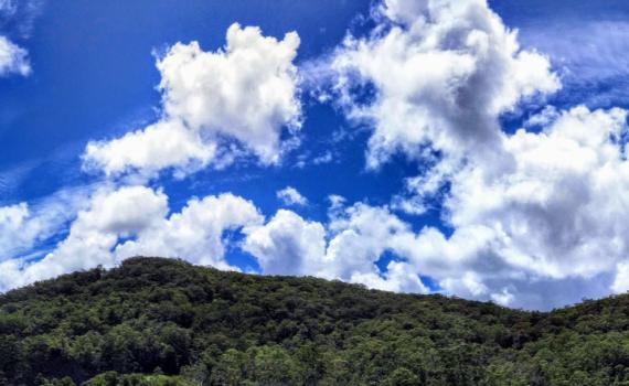 Sky over Narara Feb 2021