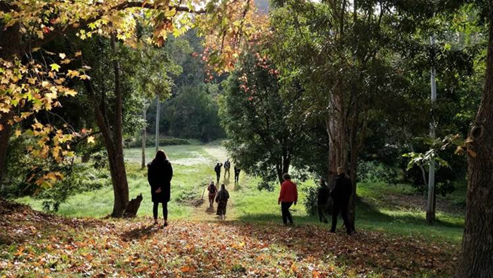 A group of people walking through a forest  Description automatically generated with medium confidence